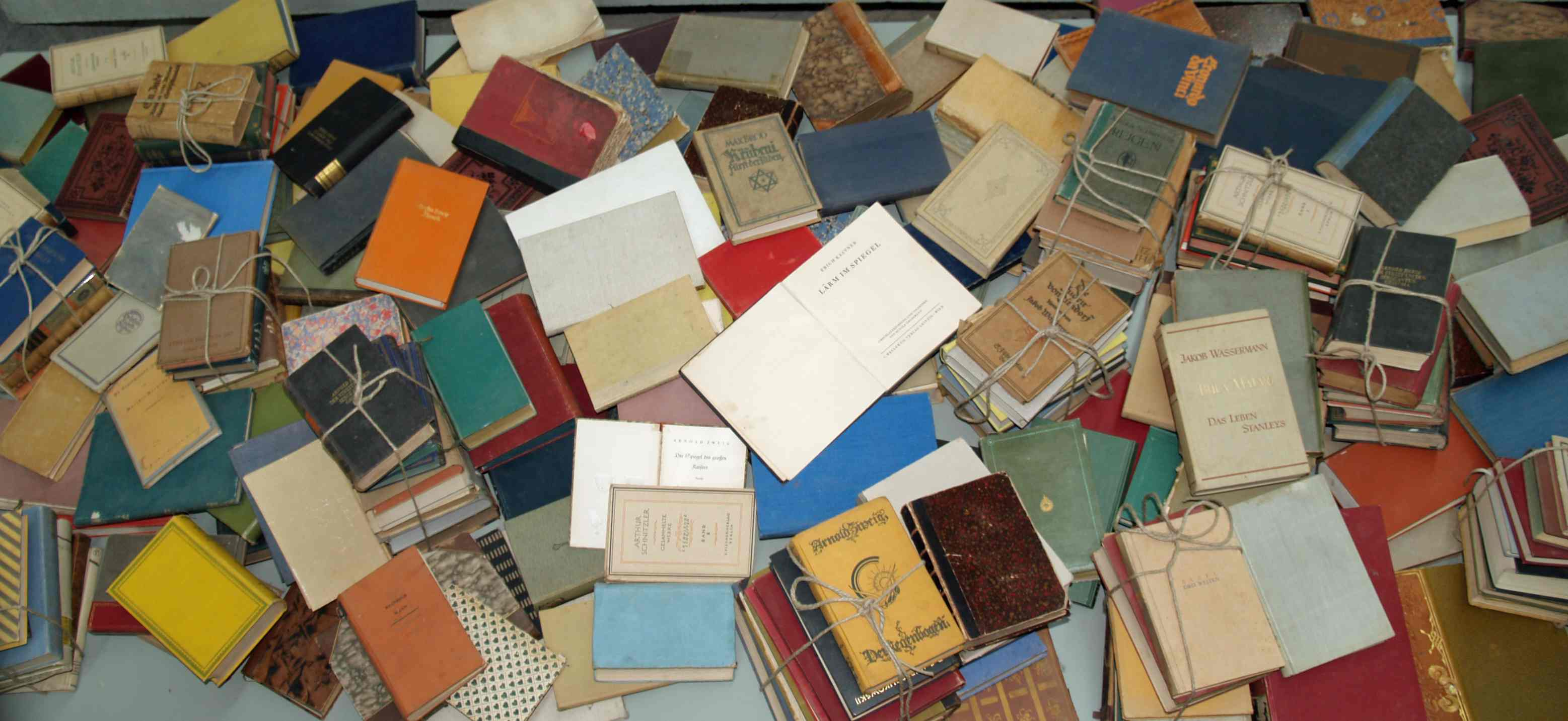 Yad_Vashem_Books_burned_by_Nazis_by_David_Shankbone