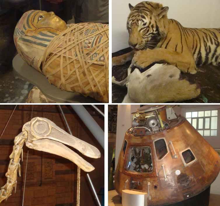 Лондонские музеи: естествознания, естественной истории, научный и британский музей – краткая прогулка.