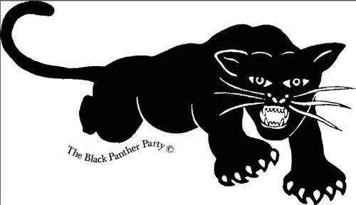 Blackpanterpartylogo