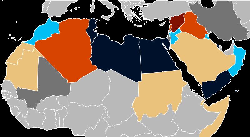 Арабская весна. Причины и последствия событий 2011 и 2013 гг. Взгляд американофоба.